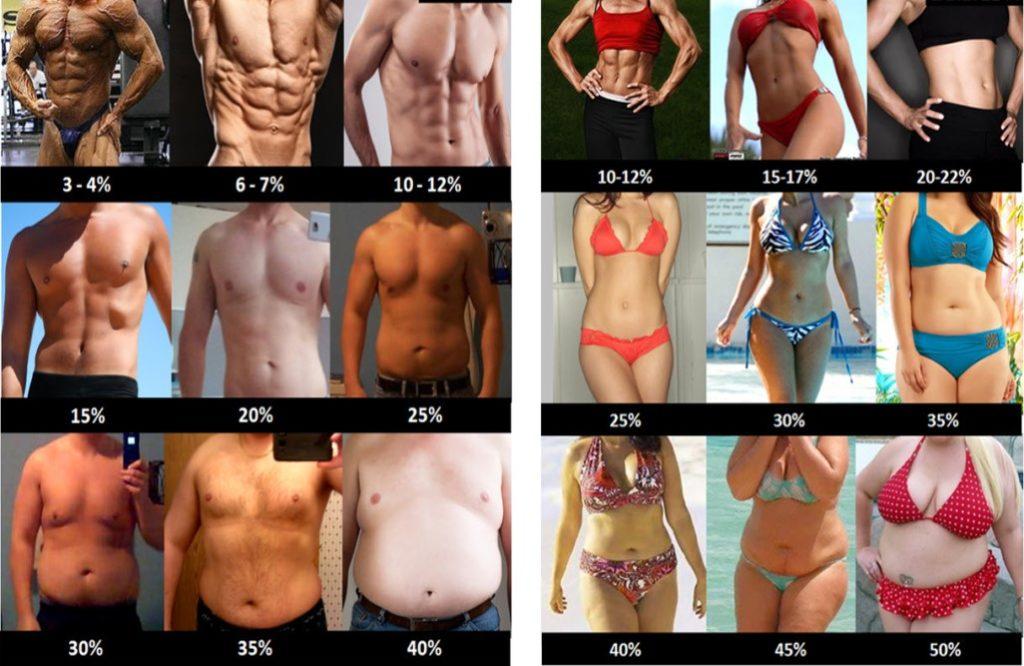 Personas mostrando distintos porcientos de grasa corporal